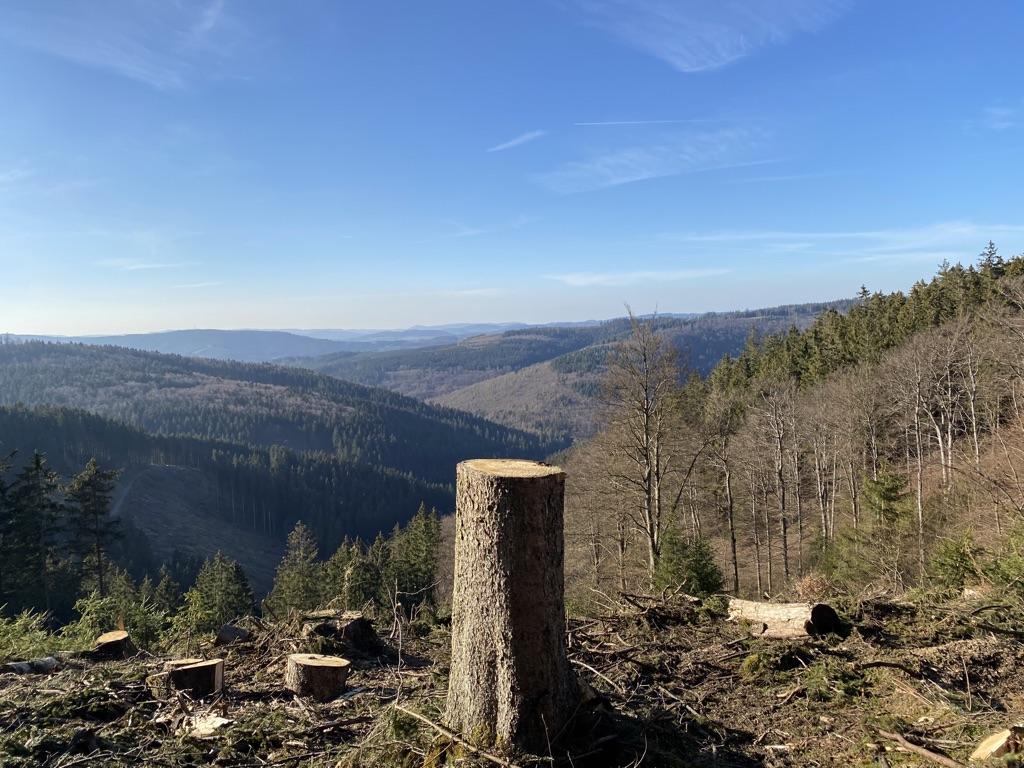Neue Aussichten im Land der 1000 Berge 6
